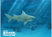 Hungry Shark Evolution ; Requin de récif