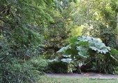 Le parc Chevassu à Lorient