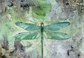 La libellule blue