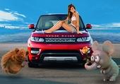 Range Rover Rouge