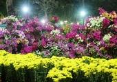 Marché aux fleurs Saigon.1