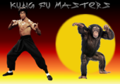 Kung fu masters - Humour