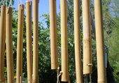 instrument en bambou