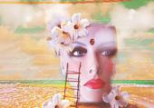 Désintegration - Lisa Stanley