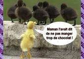 Ah la gourmandise!!