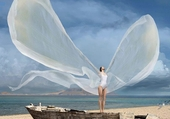 Volar...