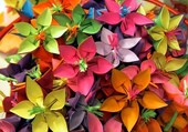 Origami de fleurs