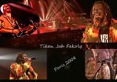 Puzzle Tiken Jah Fakoly - Concert Paris 2008