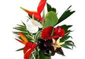 Ce bouquet