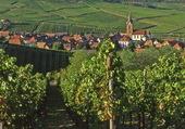 Puzzle Village Alsacien