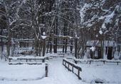 Découverte du Giffre en hiver