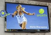 Maria Sharapova crève l'écran