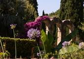 Jardins du Gard