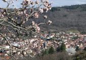 Arrivée du printemps à Romagant