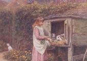 la cage à lapin
