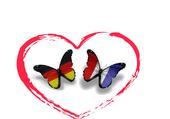 Papillon France Allemagne
