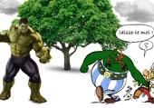 Obelix vs Hulk