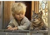 Chat et gamin copains
