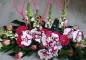 Composition avec orchidées