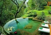 Puzzle Jolie piscine dans la verdure