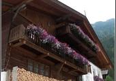 Puzzle Balcon fleuri