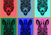 Zèbre multi couleurs