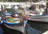 barque dans un port