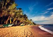 Au calme sur la plage