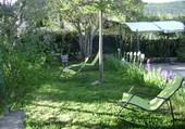 Petit matin d'avril en Hte Provence -04-