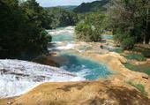 Forêts luxuriantes au Chiapas
