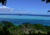 Puzzle  Polynésie