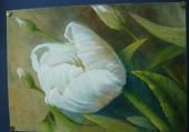 peinture tulipe