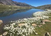 Puzzle lac Palluel
