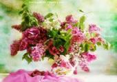 Bouquet de lilas et autres