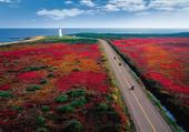 Puzzle Île Miscou - Canada