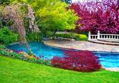 Belle piscine dans le jardin