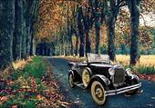 Vieux Cabriolet Ford en forêt