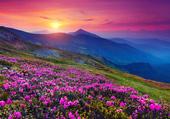 paysage campagnard coucher de soleil