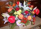 jolie gerbe de fleurs