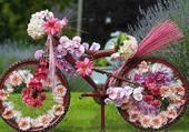Vélo fleuri