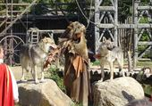 Puzzle les loups du Puy du Fou