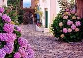 Petite rue de village bien fleurie
