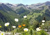 St Véran - Hautes Alpes