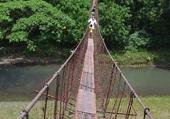 Pont/Leyte/Philippines