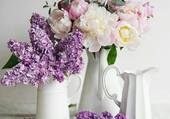 Cruches de fleurs