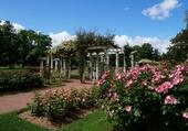 Roseraie du Parc de la Tête d'Or