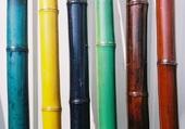 Tiges de bambou colorée