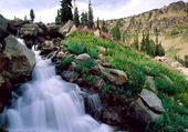 National Park Wyoming