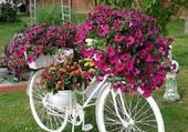 Velo fleuri