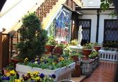 Jardin intérieur coloré
